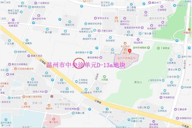 温州市中央涂单元D-13a地块位置图.jpg